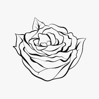 빈티지 개요 장미 올드 스쿨 플래시 문신 디자인 기호