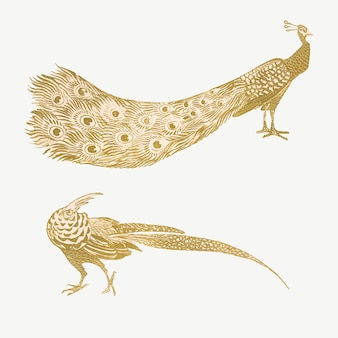 Vintage peacock and cock art print vector, remix from artworks by theo van hoytema