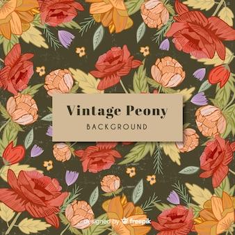 Vintage peony flowers background
