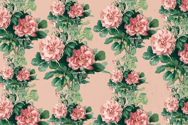 Vintage pink rose floral background illustration, remix from artworks by l. prang & co.