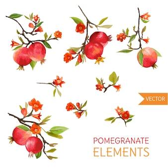 Vintage pomegranates, flowers and leaves