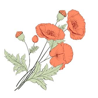 Vintage poppy bouquet.