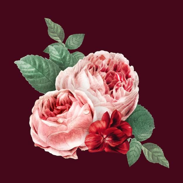 빈티지 레드 벡터 더블 이끼 장미 꽃다발 손으로 그린 그림