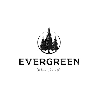 Vintage retro hipster pine tree evergreen logo design vector