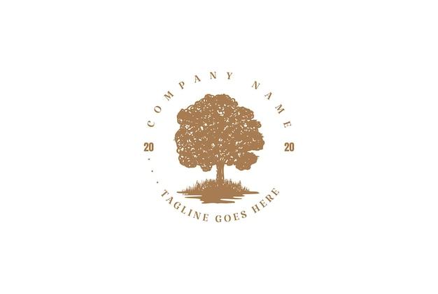 Vintage retro oak banyan maple family tree life logo design vector