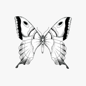 Vintage simple old school flash butterfly tattoo design icon