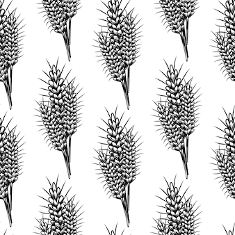 Vintage sketch with wheat seamless pattern on white background.
