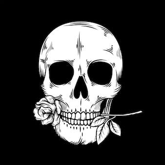 빈티지 해골 머리 그림 물린 장미