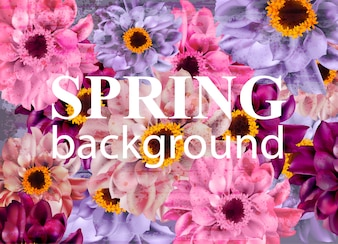 Vintage spring background with daisy flowers