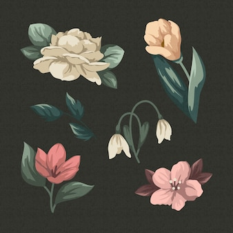 Vintage spring flower collection
