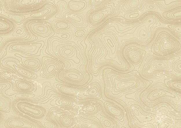 Vintage style topography map design