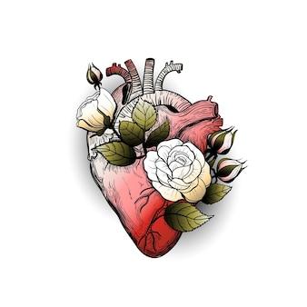 咲くバラとヴィンテージタトゥー花の解剖学的心臓