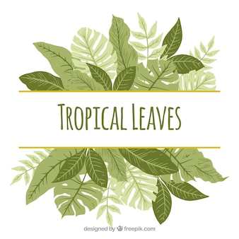 Vintage tropical background with flat design