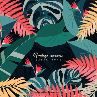 Vintage tropical leaves background