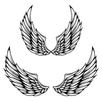 Vintage wings  on white background.  elements for logo, label, emblem, sign, brand mark.
