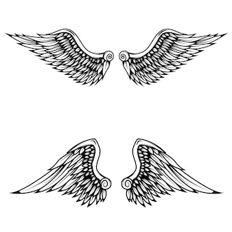 Vintage wings  on white background.