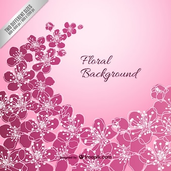 Violet sfondo floreale