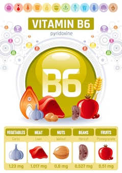 비타민 b6 식품 인포 그래픽 포스터. 건강한 다이어트 보조제 디자인