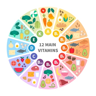 Vitamin food infographic