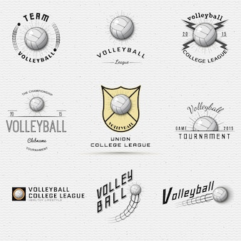 Volleyball badges logos and labels can be used for design