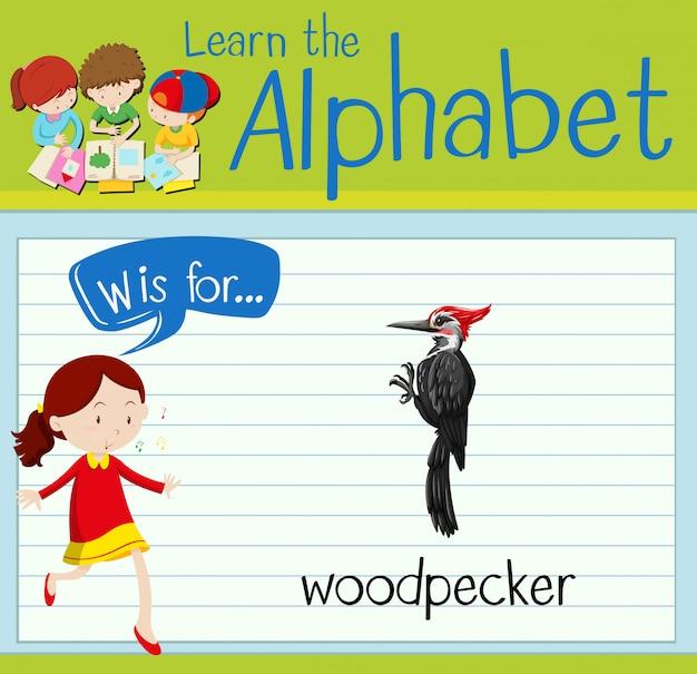 フラッシュカードのアルファベットwはキツツキのためのものです