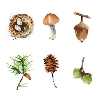 Осенние элементы природы в акварельном стиле. листья, сосновые шишки, гнездо птицы, окрашенные в w