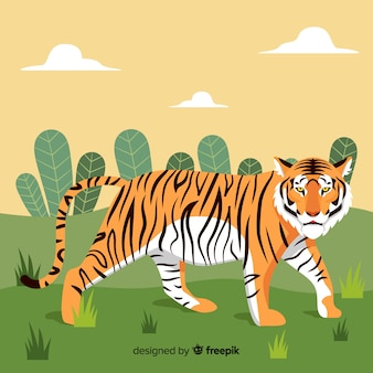 Walking tiger background