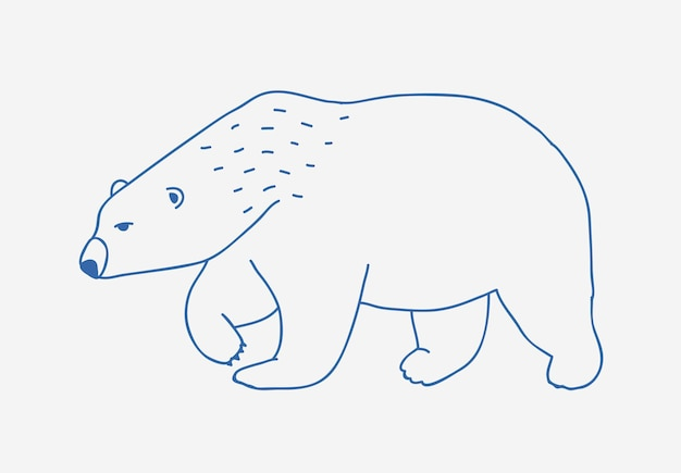 Walking or wandering polar bear hand drawn with blue contour lines on white background. sad and fierce cartoon wild arctic animal, large northern carnivorous mammal. monochrome vector illustration.