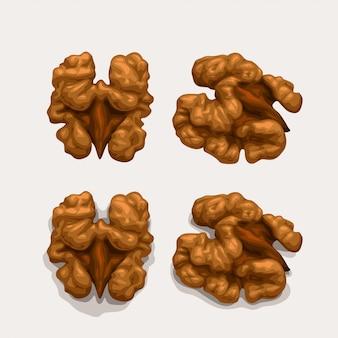 Набор грецких орехов, изолированные на белом