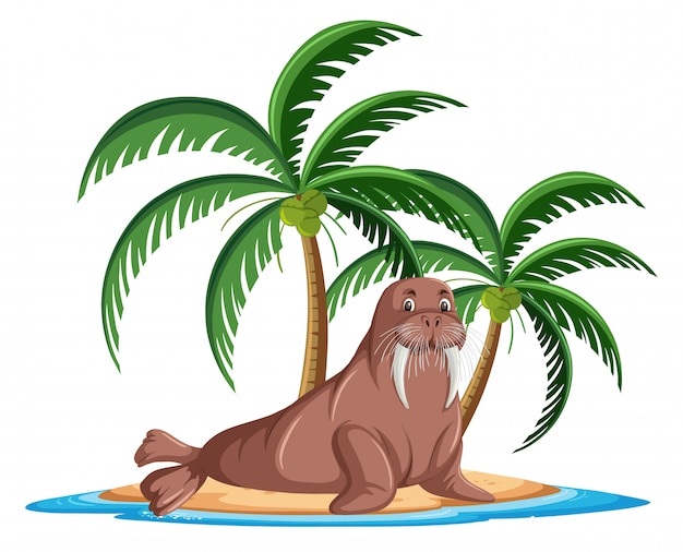 Walrus in tropical island cartoon character on white background