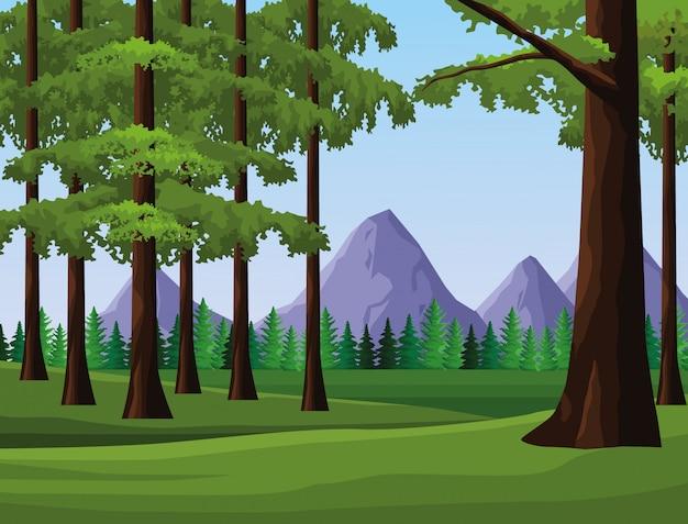 Wanderlust landscape scenery