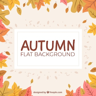 Warm background with an autumnal frame