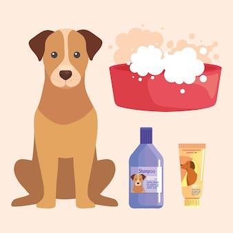 Набор иконок для мытья домашних животных