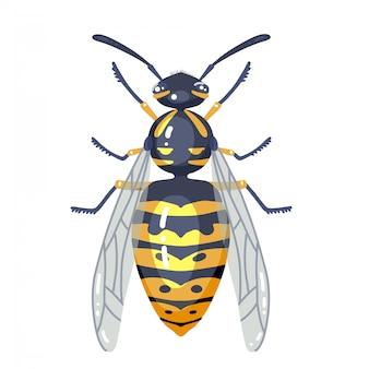 Иллюстрация насекомого оси изолированная на белизне. цветная оса иллюстрированная ошибка. плоский дизайн.