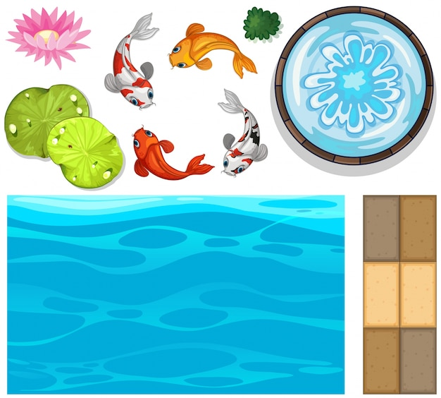 Water background with fish and lotus
