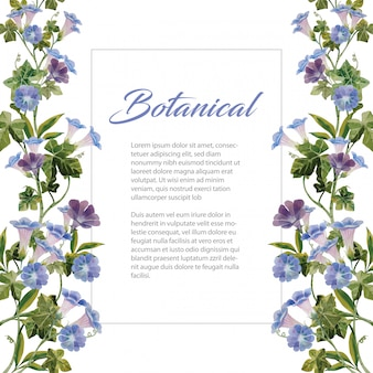 Water color blue morning glory flower botanical bouquet on white background illustration frame