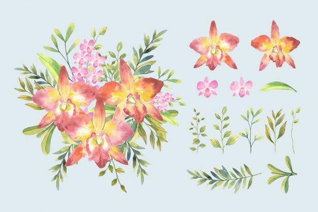 물 색깔 분홍색 난초와 격리 된 배열으로 식물 스타일에서 잎 부케와 cattleya 난초 그림을 설정합니다.