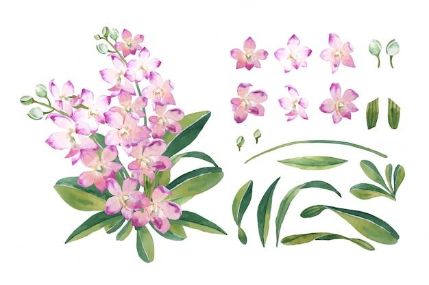 격리 된 배열 그림에 설정 식물 스타일에서 잎 부케와 물 색 분홍색 난초 꽃.
