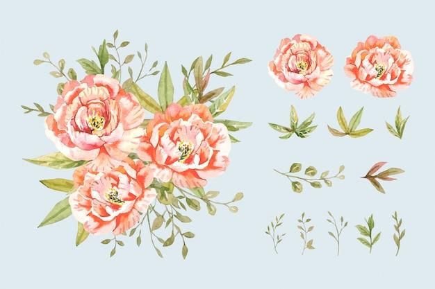 격리 된 배열으로 식물 스타일에서 녹색 잎 부케와 물 색 분홍색 모란 그림을 설정합니다.