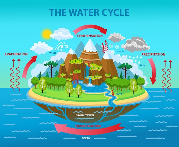 The water cycle.  cartoon illustration.