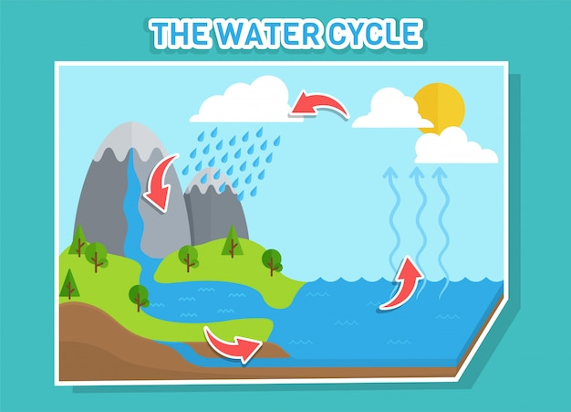 Water cycle diagram shows the water cycle from water droplets to raindrops.