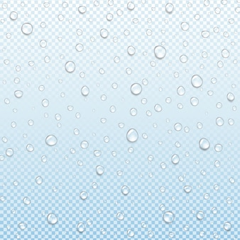 Water drop isolated transparent blue background with gradient mesh, illustration
