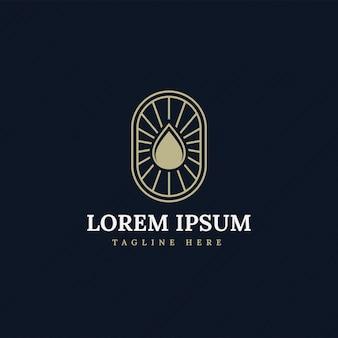 Water drop, oil, olive, vintage logo premium with line premium