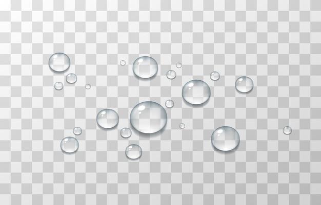 물방울, 창, 표면의 결로. 격리 된 투명 한 배경에 현실적인 상품입니다.