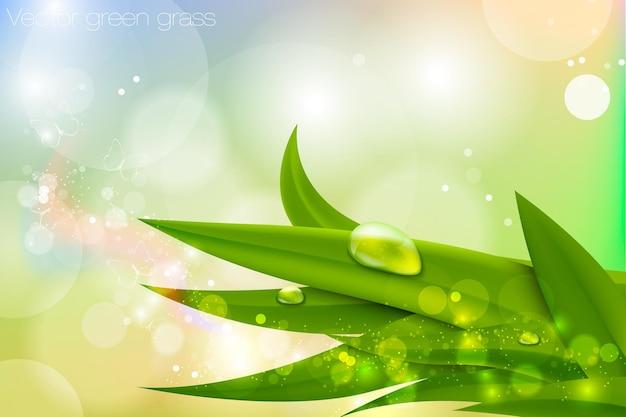 リアルな新緑の芝生に水滴。