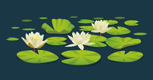 Водяные лилии. векторные иллюстрации шаржа
