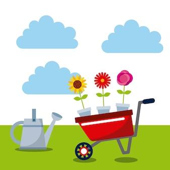Watercan and wheelbarrow with beautiful flowers