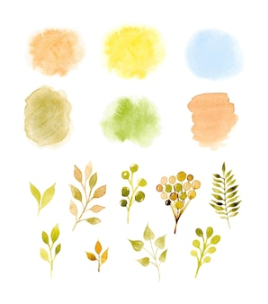 Watercolor abstract stains and branches collection