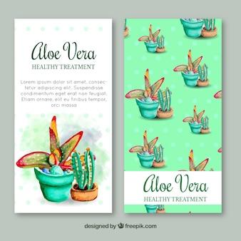 Brochure di acquerello aloe vera