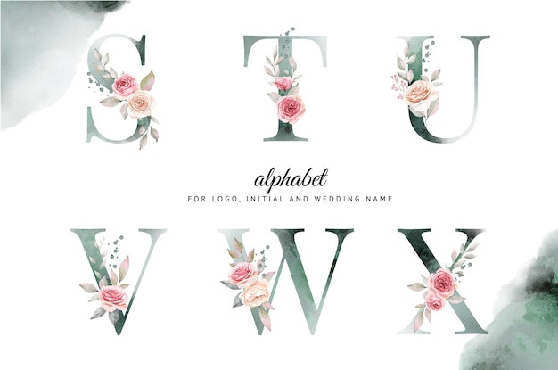 Watercolor alphabet set of s, t, u, v, w, x with beautiful floral.